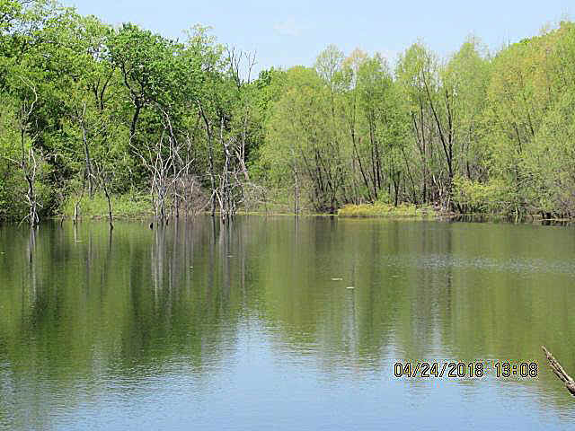 chad2250pond_1.jpg (52458 bytes)